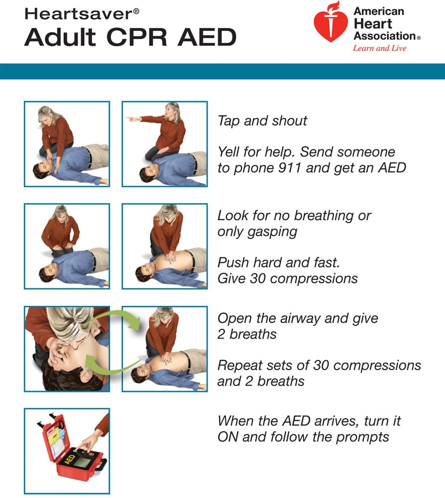 cpr for adults 2015